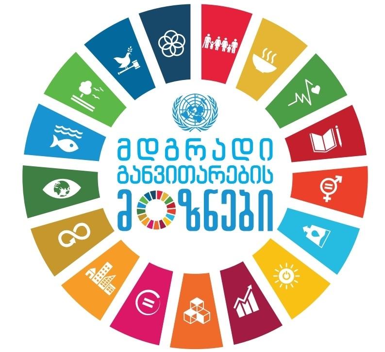 SDG Financing Report, Georgia